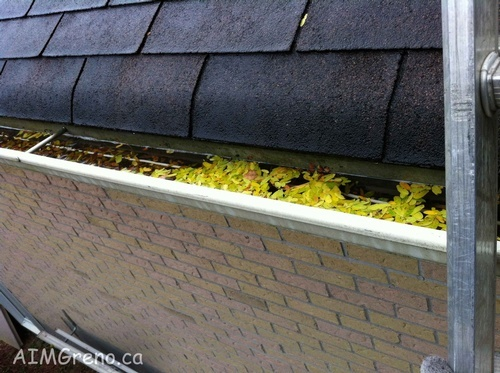 Gutter Cleaning Newmarket - AIMG Inc