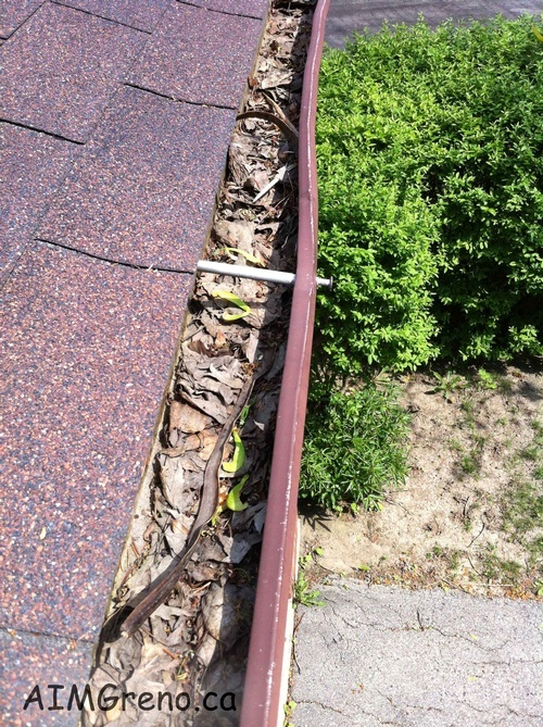 Eavestrough Cleaning by Caulking Contractors Thornhill