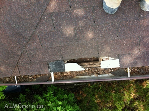 Eavestrough Cleaning by Caulking Contractors Maple