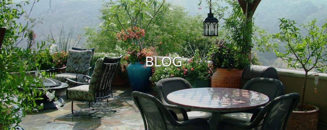 Blog by Give Me Shelter Design - Interior Design Firm in Los Angeles, California