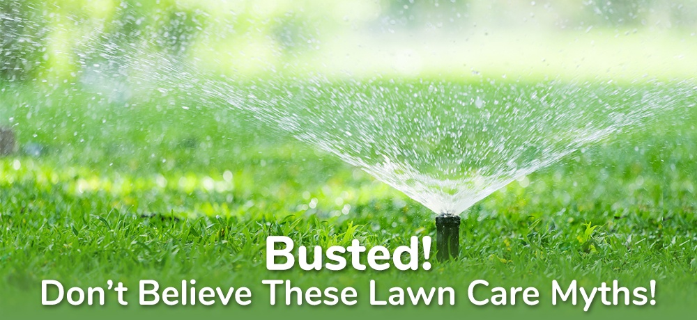 Busted!-Don't-Believe-These-Lawn-Care-Myths- Klink & Son.jpg