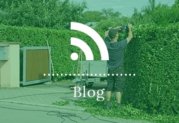 Blog by Ornamental Landscape Maintainers Ltd.