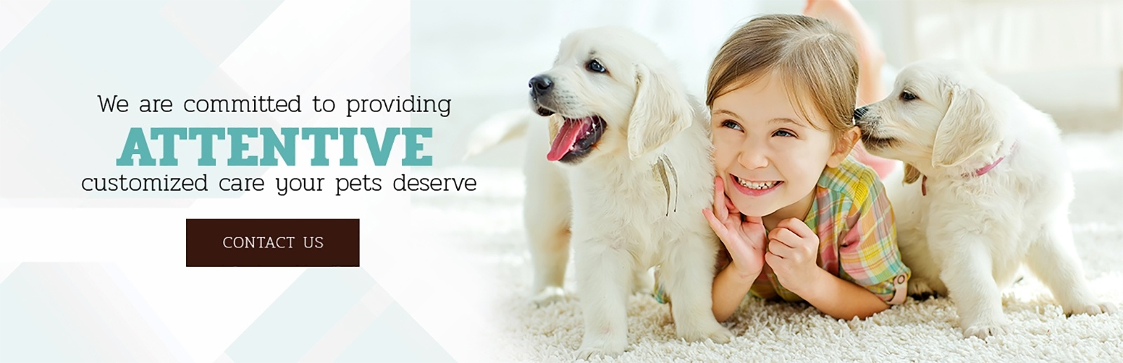 best dog boarding Toronto