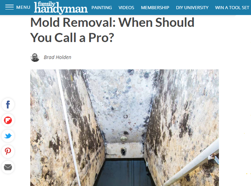 Mold Removal  When Should You Call a Pro    The Family Handyman (1).png