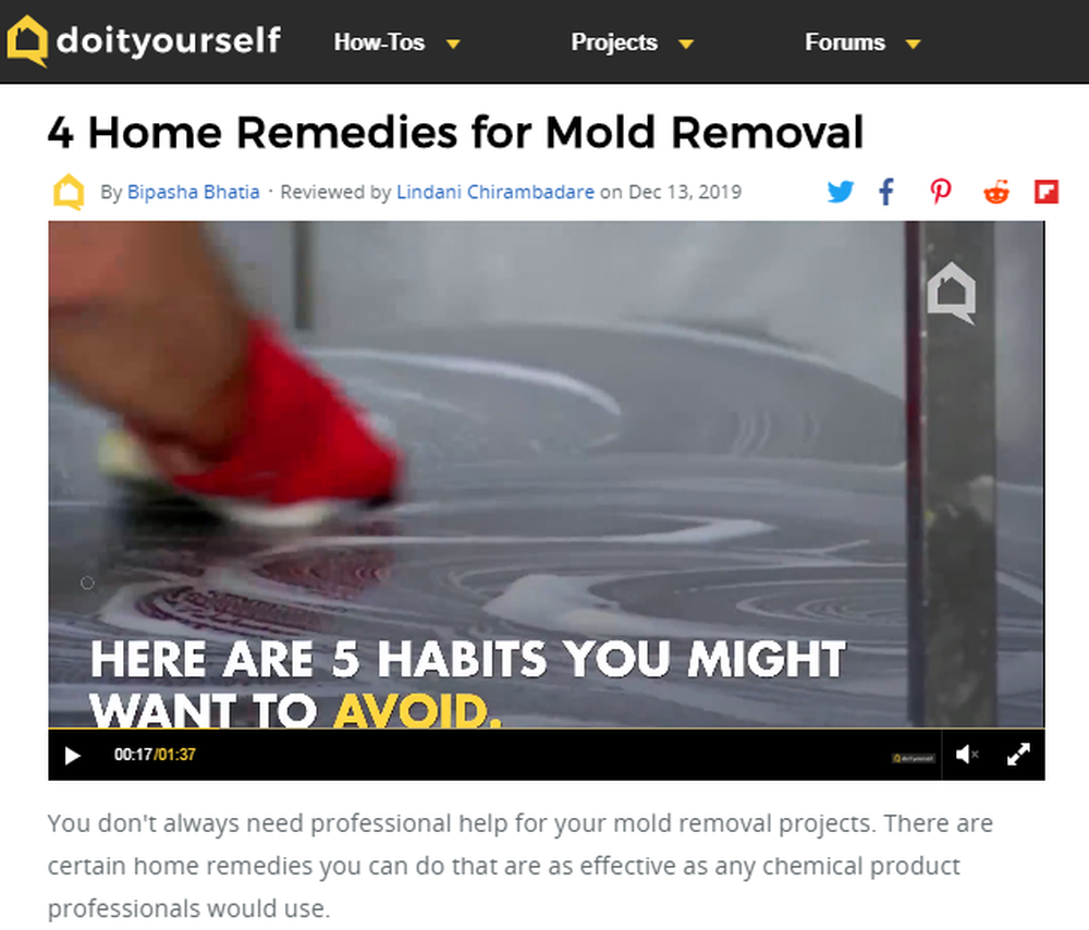4 Home Remedies for Mold Removal   DoItYourself com.png
