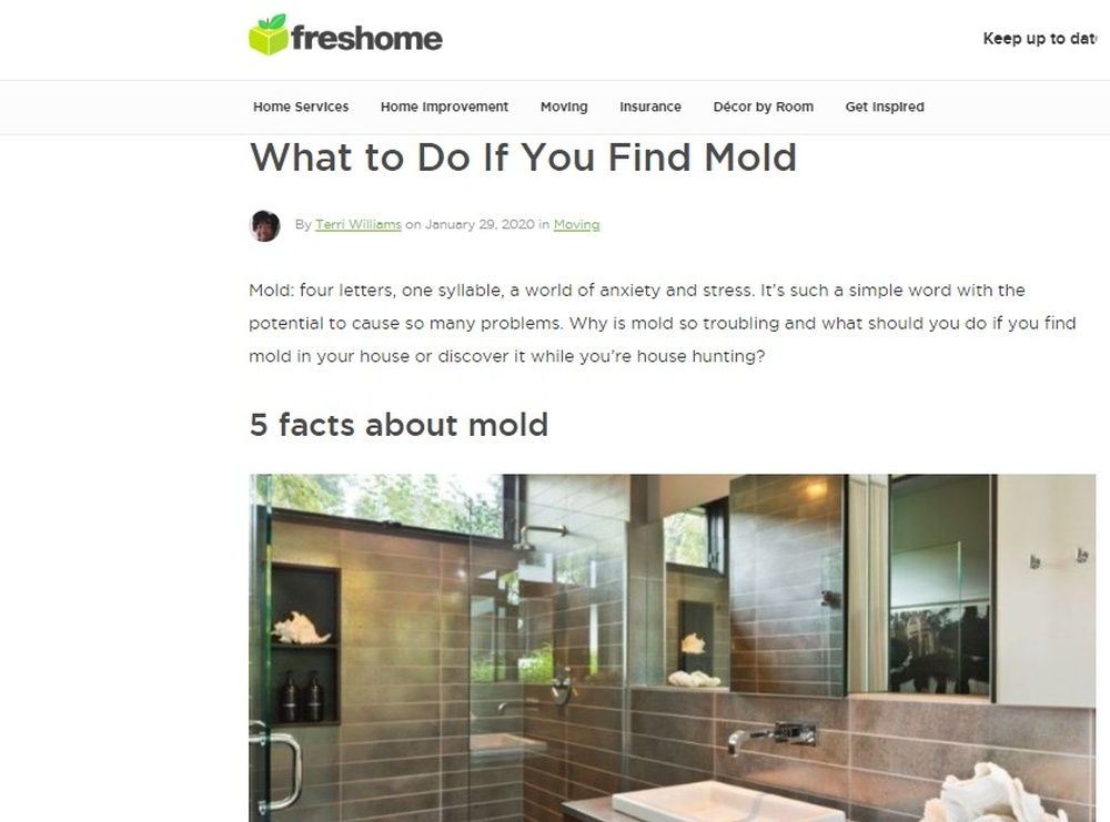 What to Do If You Find Mold - Freshome com Home Guide.jpg