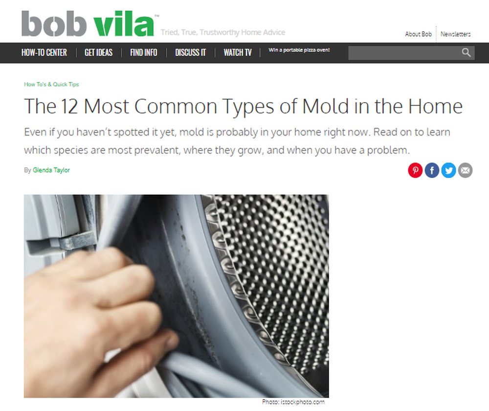 12-Most-Common-Types-of-Mold-in-Homes-Bob-Vila.png