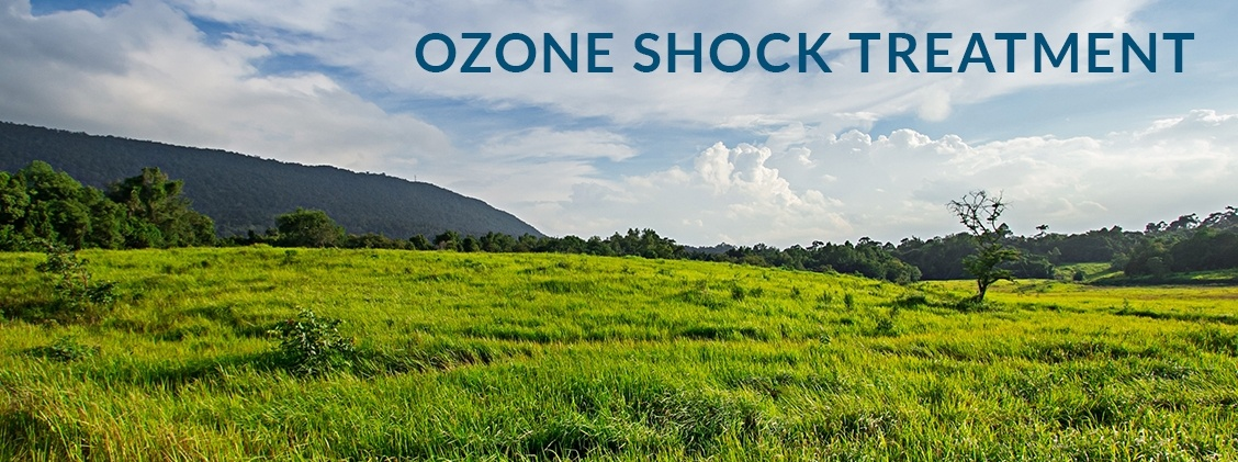 ozone shock treatment niagara