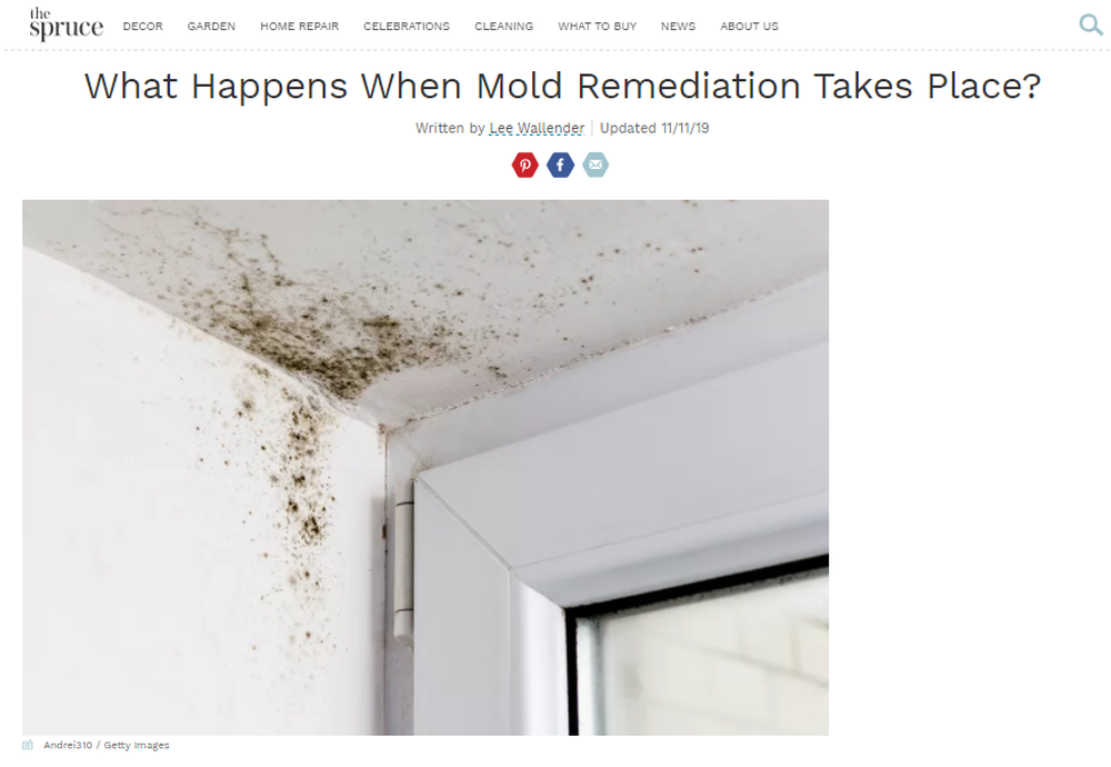 What-Happens-During-the-Process-of-Mold-Remediation (1).png