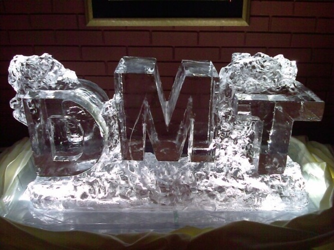 Block Letter Initials Ice Carving by Festive Ice Sculptures