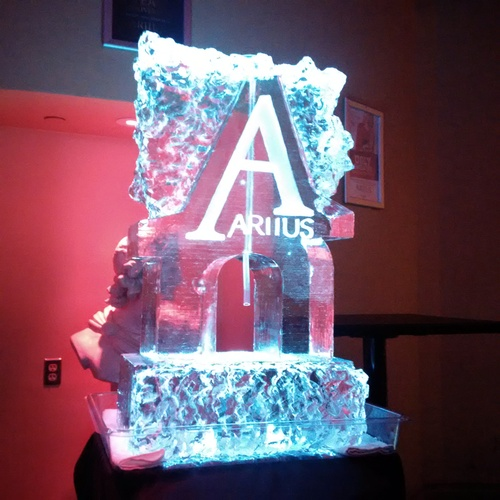 Ice Sculpture Ice Bar Ice Luge Ice Coctail Luge Ice drink server Ice Logo Luge London Hamilton Cambridge Oakville Windsor (46)