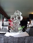 Martini Luge Bar by Festive Ice Sculptures
