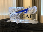 Ice Logo Corporate Ice Logo Corporate Ice Sculpture Ice Sculpture London Hamilton Cambridge Oakville Windsor (20)