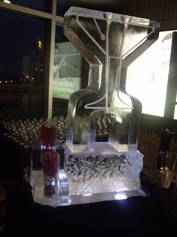 Ice Bars Martini Luges Cambridge by Festive Ice Sculptures