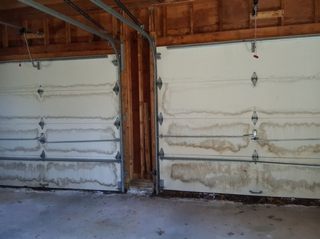 Mold Remediation Kingston MA