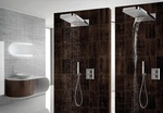 Bathroom Shower Fixtures - Old Castle Home Design Center