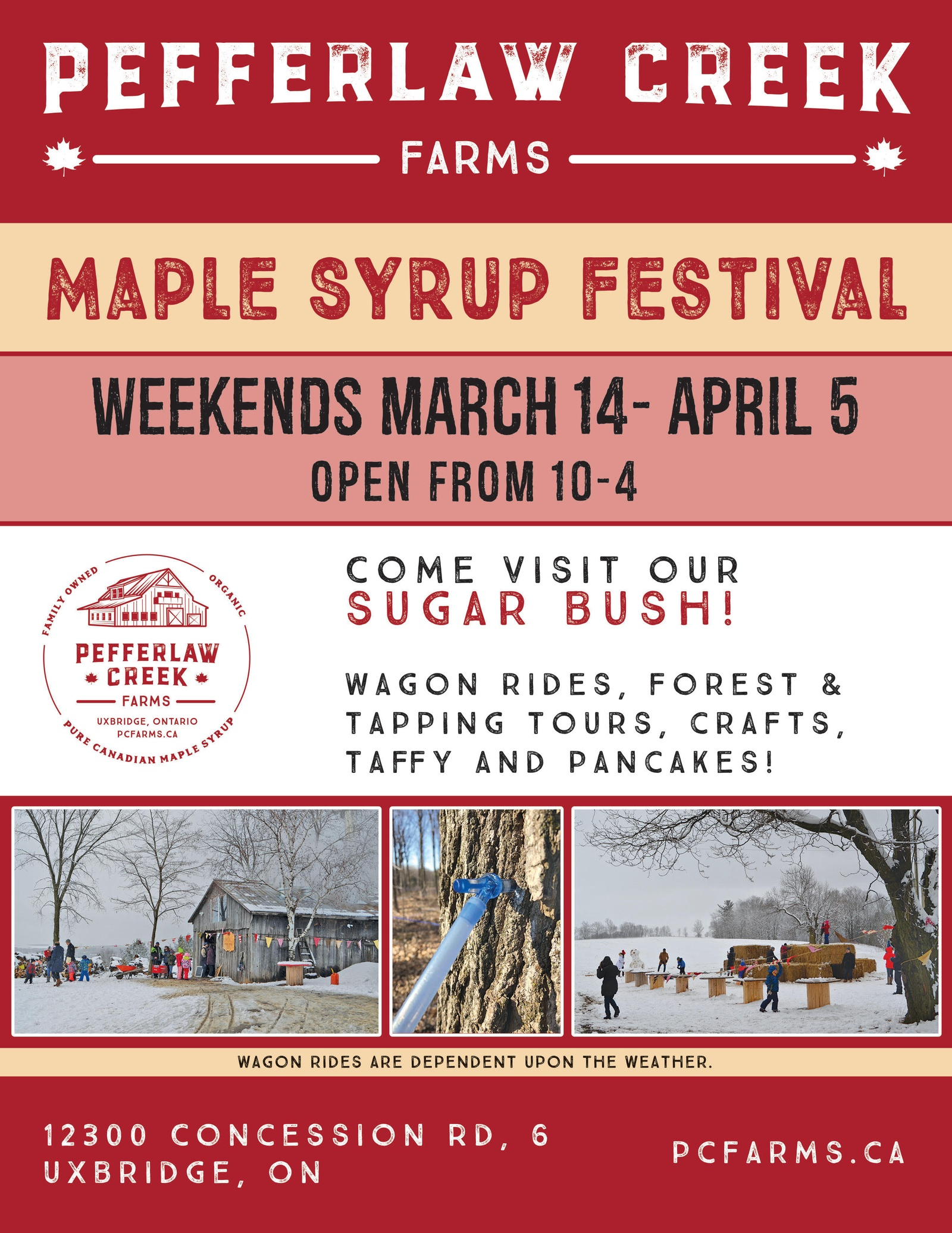 Maple Syrup Festival 2020