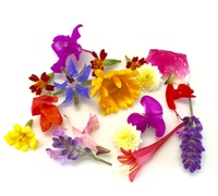 Buy Edible Flowers Online at Fresh Start Foods - Specialty Products Quebec