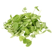 Buy Microgreens and Sprouts Online at Fresh Start Foods - Specialty Products British Columbia