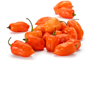 Buy Peppers Online at Fresh Start Foods - Specialty Products British Columbia