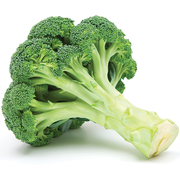 Buy Broccoli Online at Fresh Start Foods - Seasonal Vegetables
