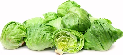 Buy Lettuces Online at Fresh Start Foods - Seasonal Vegetables British Columbia
