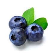 Berries - Blueberries