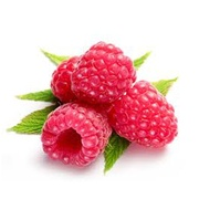 Buy Raspberries Online at Fresh Start Foods - Alberta Seasonal Fruits