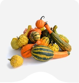 Buy Seasonal Specialities Online at Fresh Start Foods