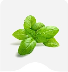Buy Herbs Online at Fresh Start Foods