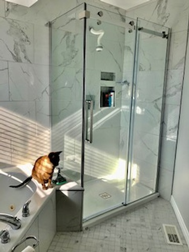 Glass Shower Room - Bathroom Interior Design Services by Walden Interior Decorator - INTERIORS by NICOLE