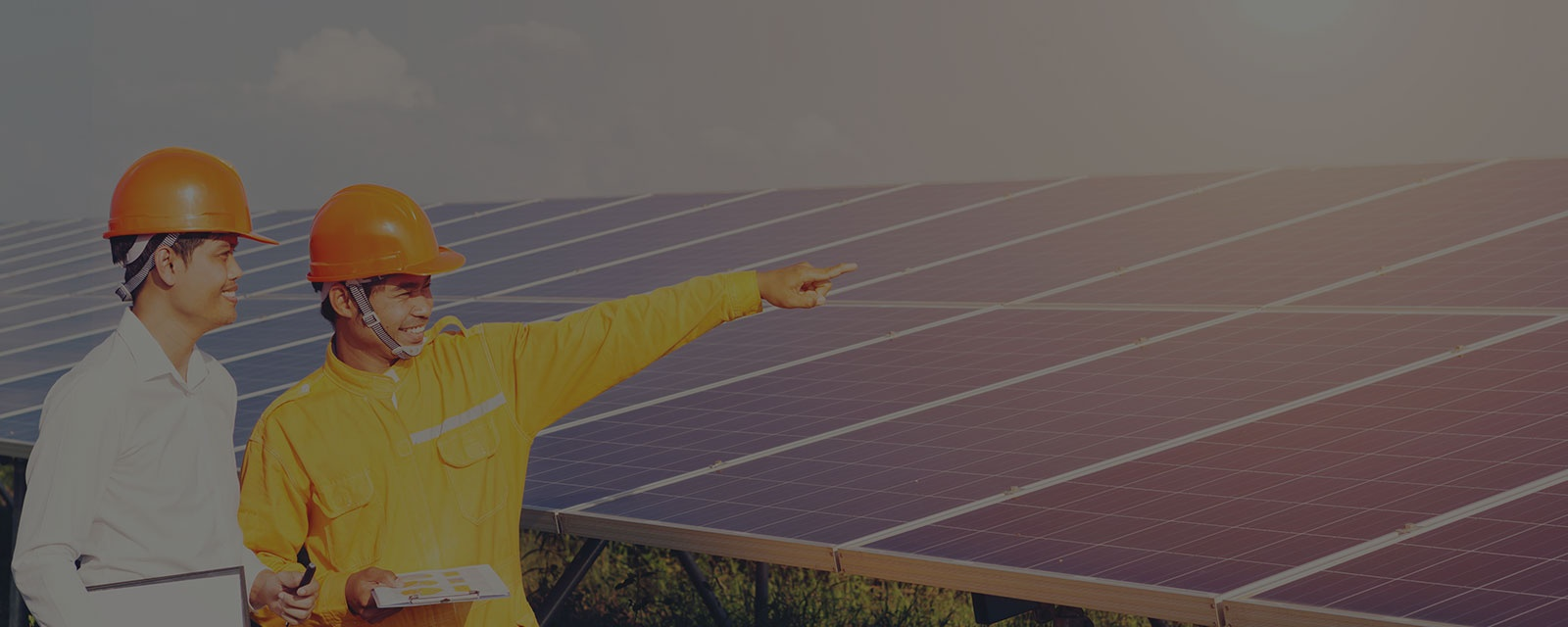 Solar Energy Consultation Services In Windermere