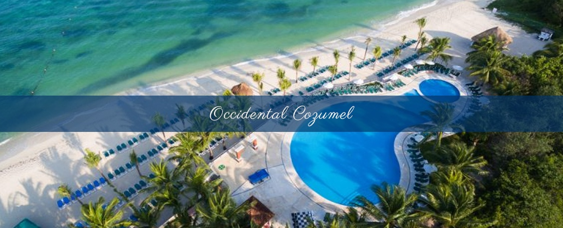 Most Stunning Beach wedding venue at occidental cozumel