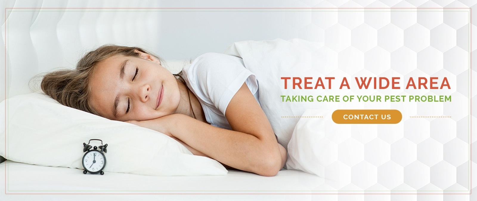 Image result for bed bug contact us