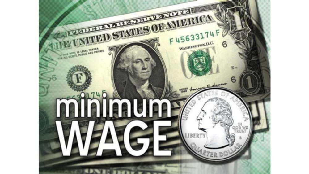minimum_wages_ppt_13011309050_11150344.5fbae6f4b8204.png