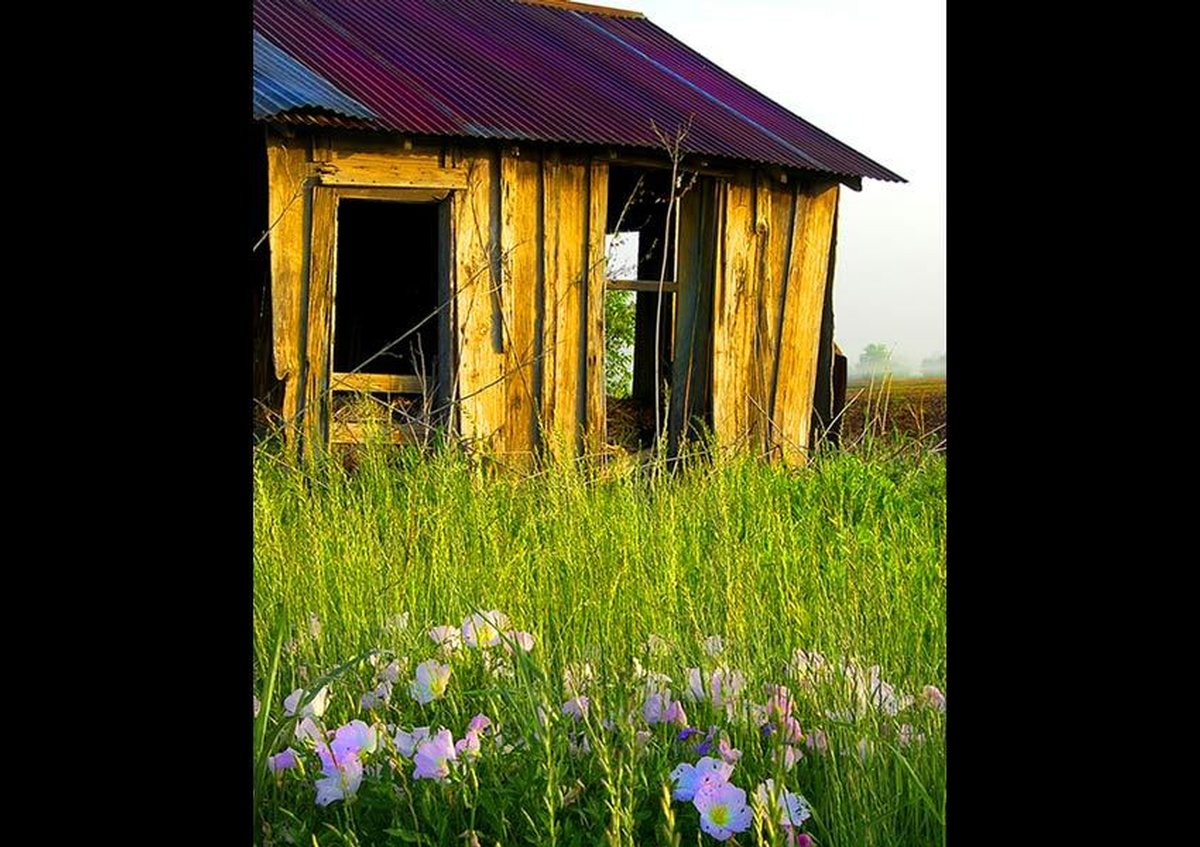 A deserted wooden cabin in the middle of a field - Joe Robbins Photography