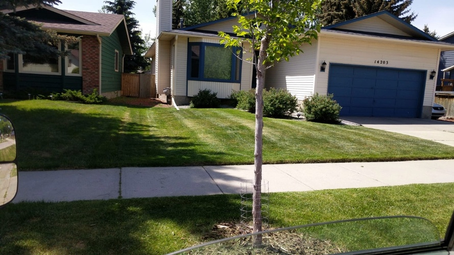 Lawn Care Services in Cochrane