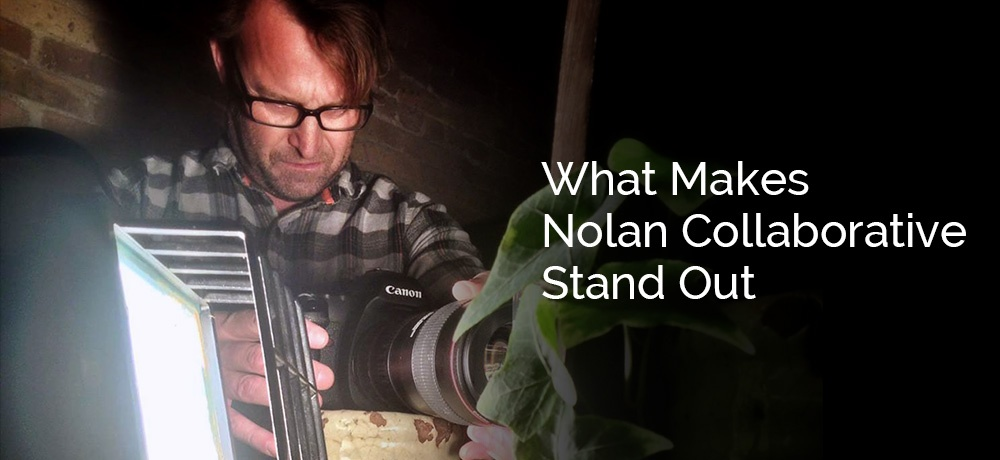What-Makes-Nolan-Collaborative-Stand-Out.jpg