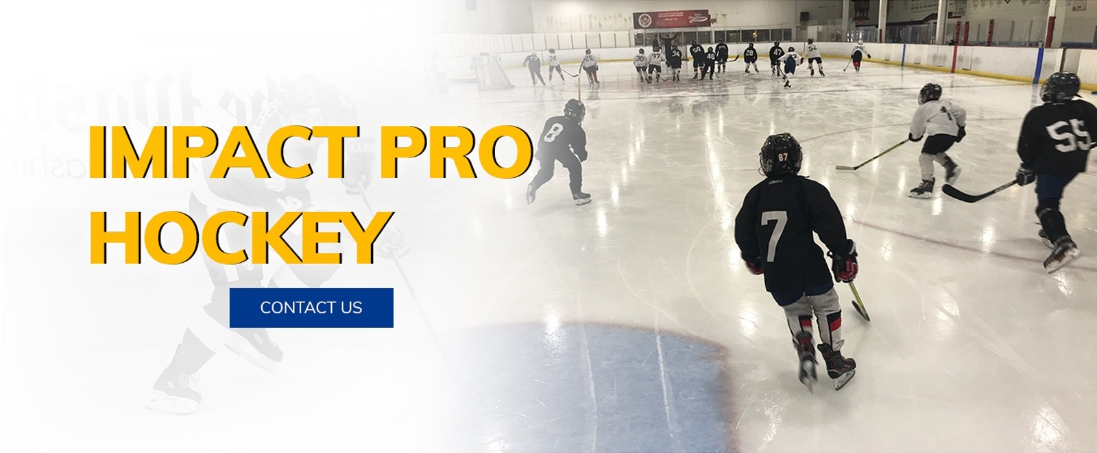 Impact Pro Hockey - Hockey School South Florida