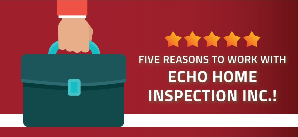 Why-You-Should-Choose-Echo-Home-Inspection-Inc.! (2).jpg