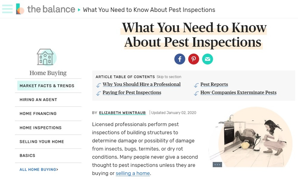 What You Need to Know About Pest Inspections (1).jpg
