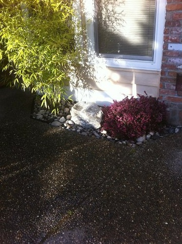 Water Feature Maintenance Services Surrey