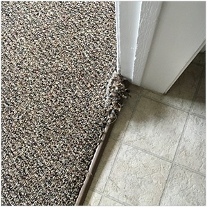 Carpet Repair Edmonton