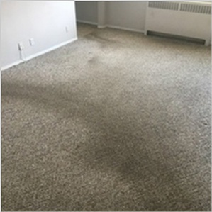 Carpet Shampooing Services Area Rug Cleaning Edmonton