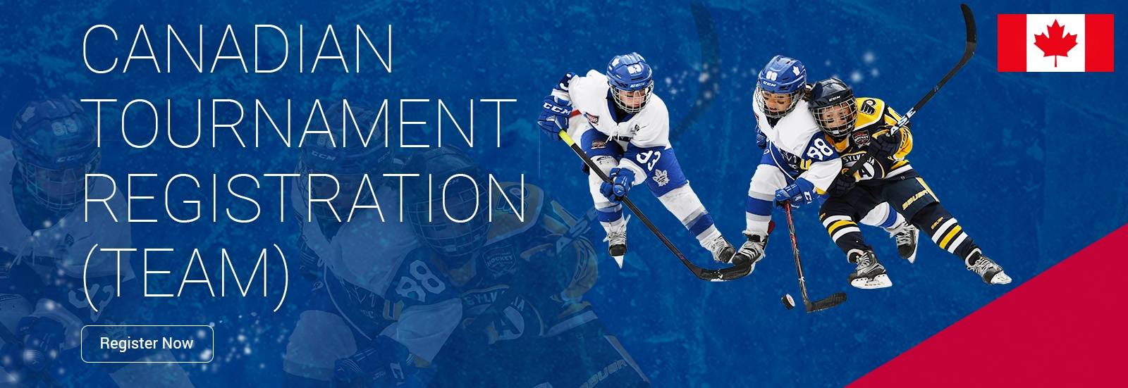 Pro Hockey Development Group