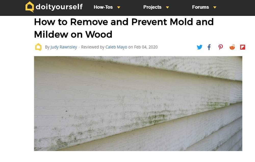 How to Remove and Prevent Mold and Mildew on Wood   DoItYourself com.jpg