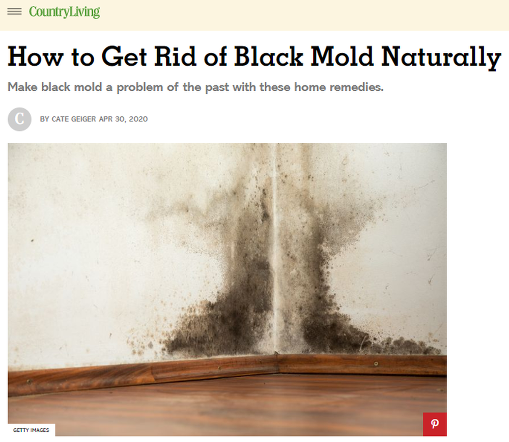Black_Mold_Removal_Natural_Ways_to_Get_Rid_of_Black_Mold.png