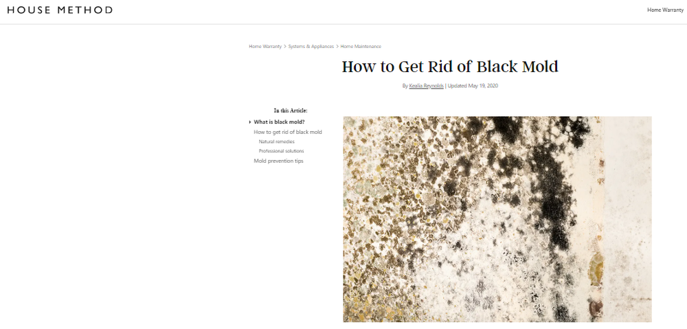 How_to_Get_Rid_of_Black_Mold.png