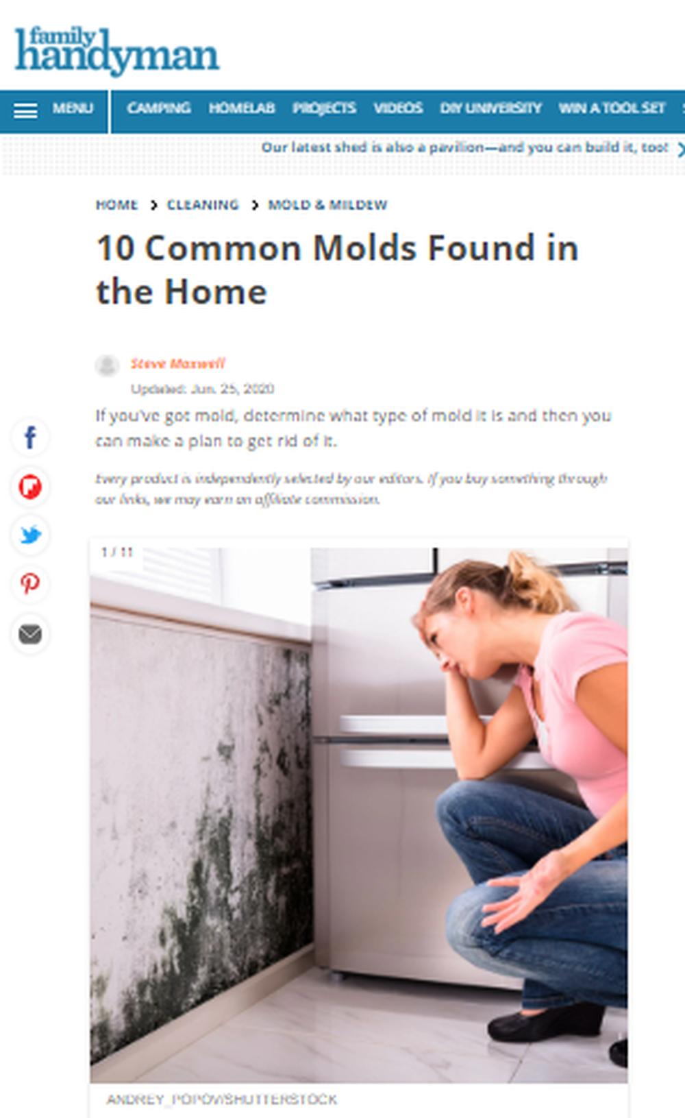 10_Common_Molds_Found_in_the_Home_The_Family_Handyman.png