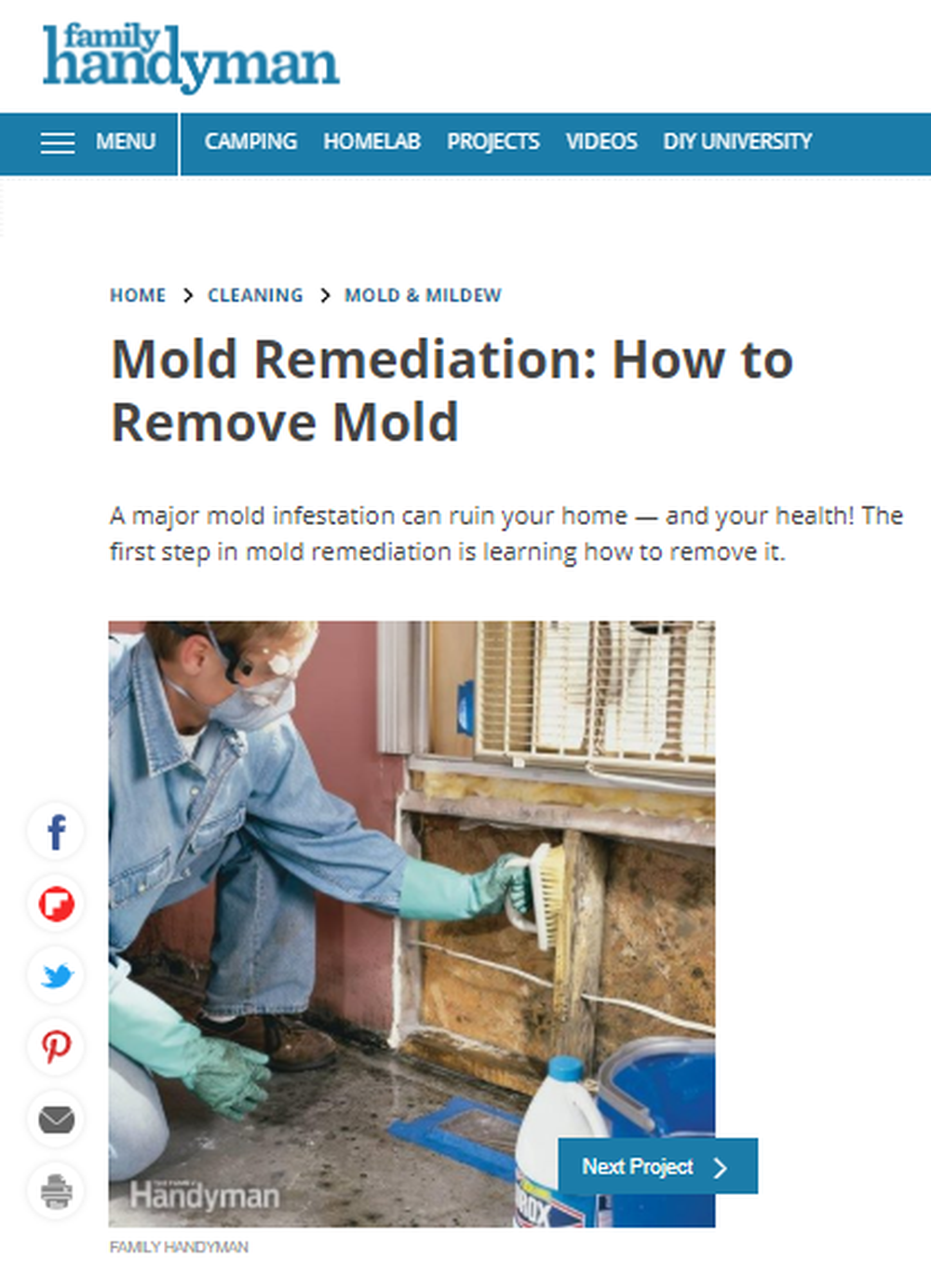 How_To_Remove_Mold_Mold_Remediation_—_The_Family_Handyman.png